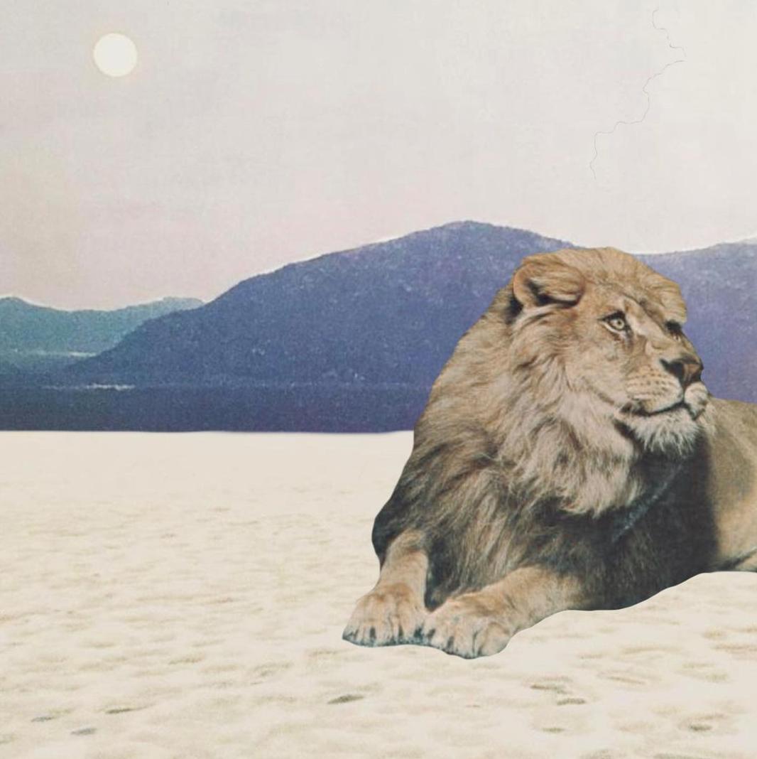 Luna llena en Leo: Ya no somos los mismos